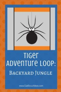 Best 25+ Tiger cub scouts ideas on Pinterest | Zoo party ...