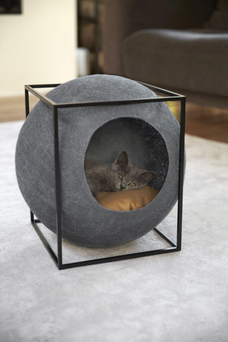 Quienes los aman suelen alegar razones estéticas entre otras muchas. Para ellos, los gatos son los animales más elegantes sobre la faz de la Tierra. Algo que, sin embargo, no suele poder aplicarse a sus enseres. «¿Por qué no existe mobiliario funcional y