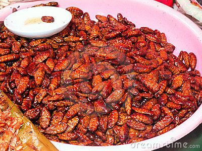 Grilled insects by Thoron, via Dreamstime