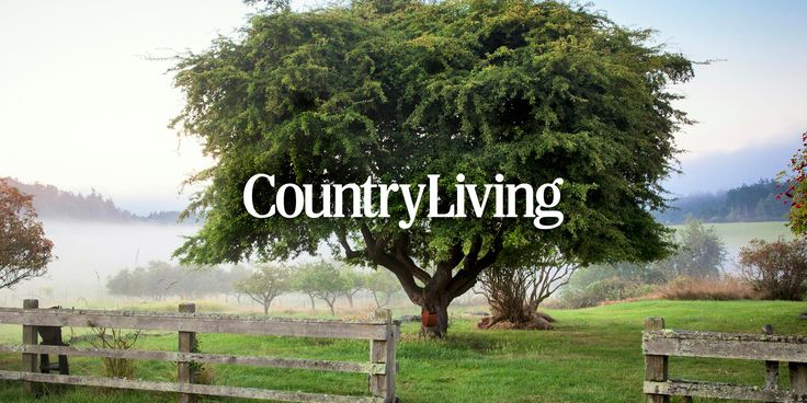 Enter the Country Living Napa Sweepstakes and you could win a getaway for 2 to Napa Valley, California worth over $4,000.