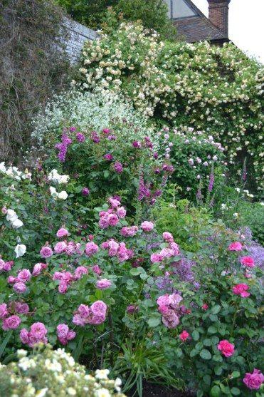 Flower Garden Ideas With Roses 12530 best flowers and gardens images on pinterest | flowers