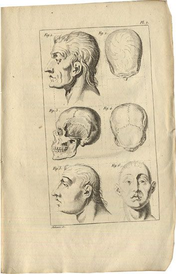 Historical case studies of neurological disorders