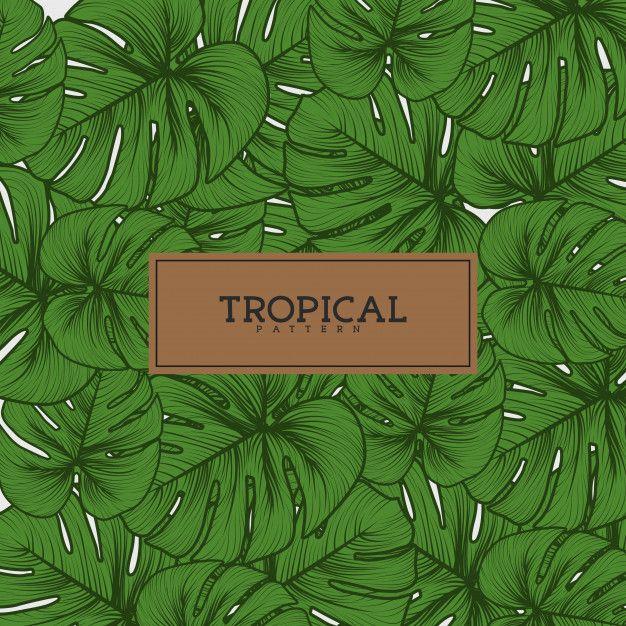 Set of Tropical Leaves Pattern Premium Vector