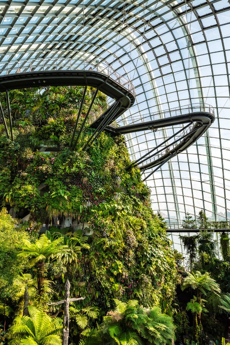 A Singapore Icon Gardens by the Bay (Pics, Tickets