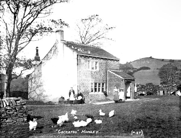 0290 Cockatoo, a house in Honley. See also the coloured version 0164.