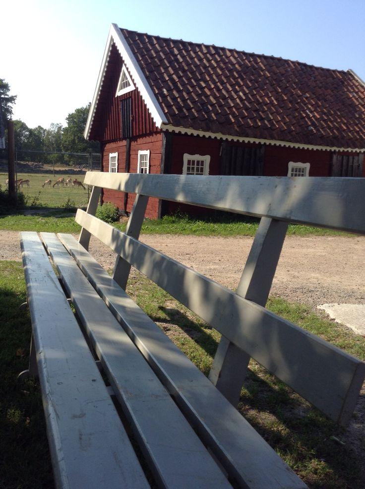 Tänk att sitta på en bänk i skugga av almen på gårdsplanen och titta på betande hjortar.