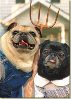 Pug Couple with pitchfork