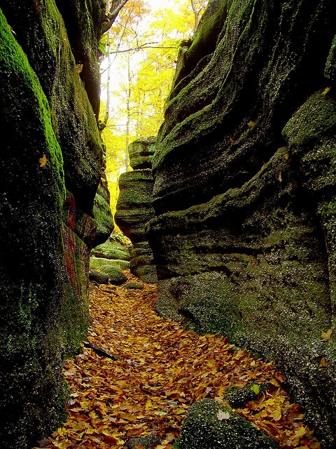 Nelson Ledges State Park, Ohio.  Photo: Terry.Tyson via Flickr