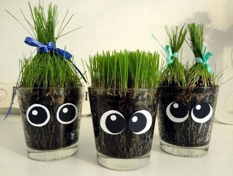 Cute greens for Haftsin