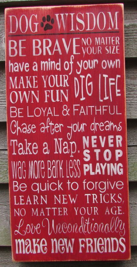 dog sign, funny dog sign, rustic decorm primitvie home decor, dog wisdom sign, hand painted sign, wood signs #dogdiy #dogdiyprojects