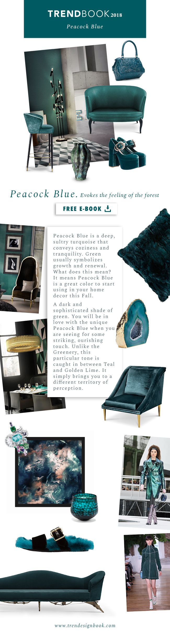 Trends 2018 / 2019 . Color Trends Peacock Blue . Moodboard