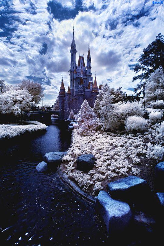 italian-luxury:  We're going to Disney Worldby Tom Bricker