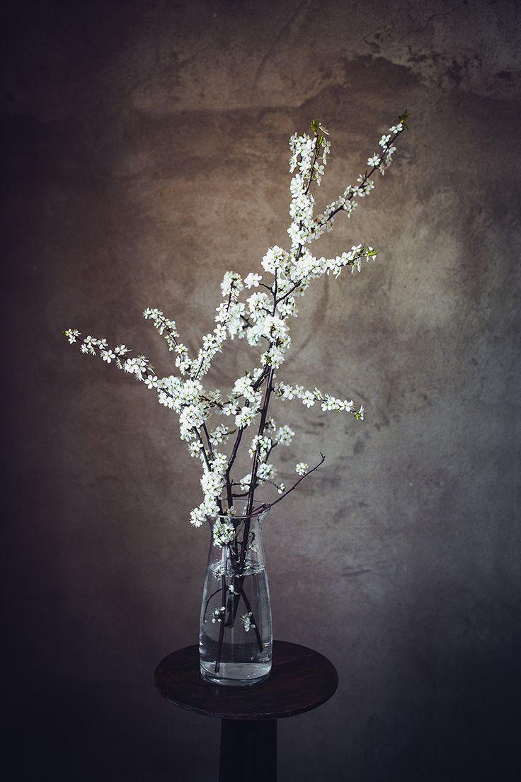Сезон цветов открыт