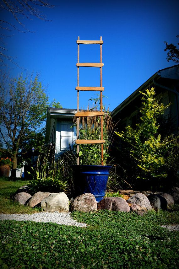 This charming, extra tall garden ladder/trellis is the perfect size to put into a pot and grow a thriller on, lean against the fence and let your cucumbers climb , or place it anywhere in your garden for that added decorative splash. Made from 100% Western Red Cedar, this is sure