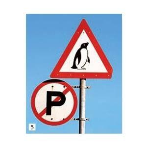Traffic Signs of South Africa :) / Небольшие детали — почтовые ящики, вывески магазинов или дверные ручки — могут рассказать о стране больше, чем любые достопримечательности. Взять, например, дорожные знаки ЮАР... http://www.vokrugsveta.ru/vs/article/8397/