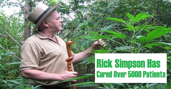HealthFreedoms – Rick Simpson Cured 5000 People from Cancer: This is the Recipe Which Kills all Types of Cancer for 90 Days (Video)