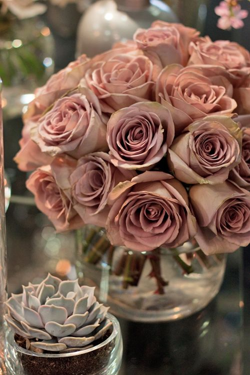 Amnesia roses and succulent in chunky glass vases. Adore the muted colour palette. Image Rona Wheeldon