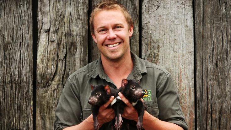 Questo piccolo Diavolo della Tasmania è la creatura più giocherellona del pianeta