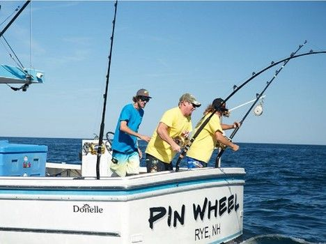 53 best images about fishing shows i write about on for Tuna fishing show