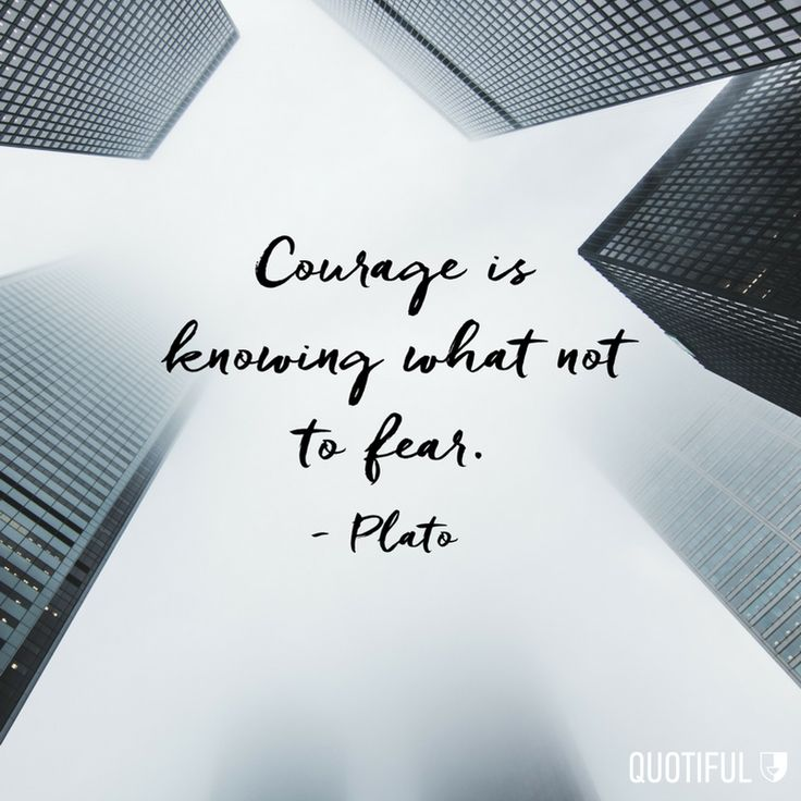 Be fearless. Be courageous.   #quotestoliveby #quotiful #quotes #quoteoftheday #quotesdaily #inspiration #inspirational #inspiring #inspirationalquotes #dailyquote