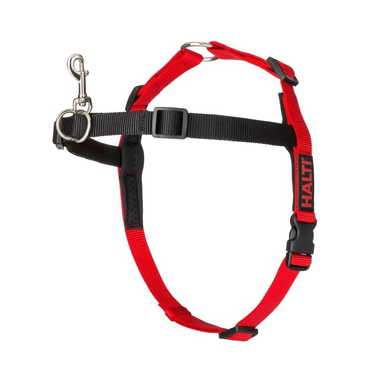 Halti Harness Black/Red Size S at Fetch.co.uk | The Online Pet Store