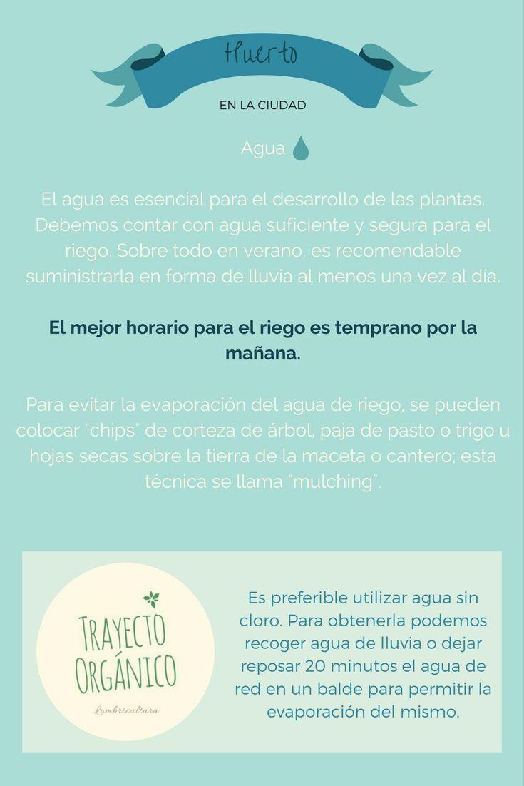 Huerto Urbano: Agua. Como cultivar tus propias hortalizas y aromáticas sin pasar hambre en el intento.
