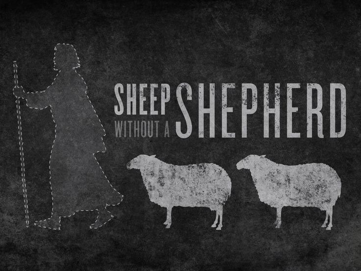 688 best my sheep know my voice images on pinterest
