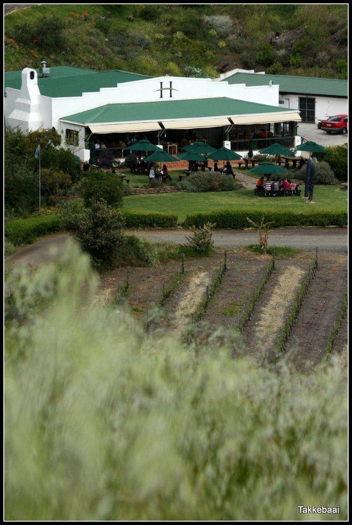 Hillcrest Restaurant #Hillcrest #Durbanville