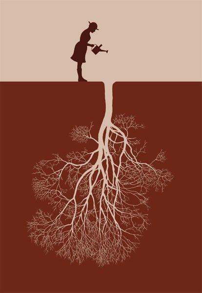Entenda porque as árvores caem e como evitar esse problema                                                                                                                                                     More