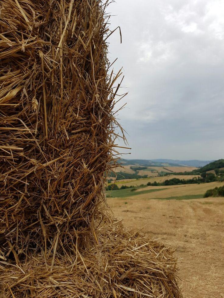 Umbrian hills