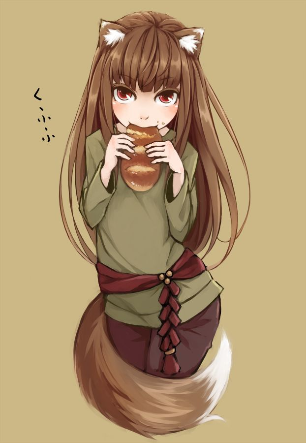 Spice And Wolf For Fans Of The Light Novels Anime And Manga Spice And Wolf Holo Spice And Wolf Anime
