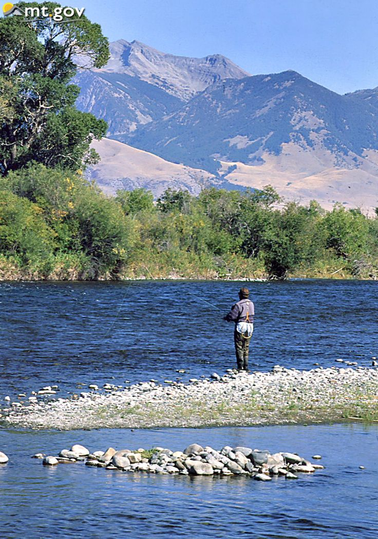 134 best fishing images on pinterest for Madison river fly fishing