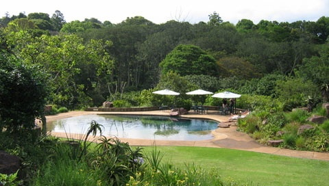 Makaranga Garden Lodge in Kloof