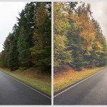 Autumn preset for Adobe Lightroom - Free Download - This Lightroom preset gives your autumn photos a colorful warm matte effect.