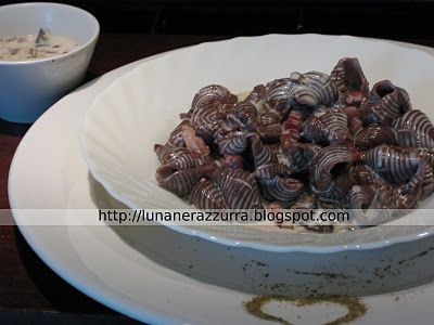 conchiglie al cioccolato in salsa di funghi, pancetta e panna