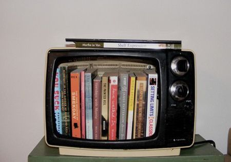 Hollowed-Out TV Bookcase