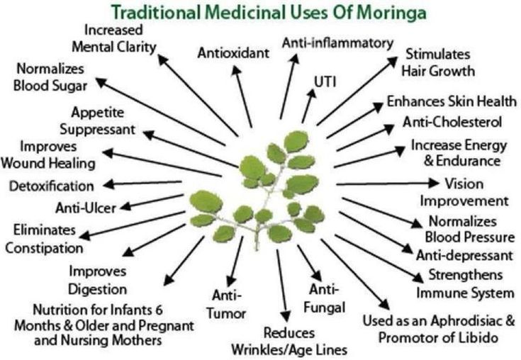 Infographic on Moringa oleifera, found in all of Zija's products. Description from pinterest.com. I searched for this on bing.com/images