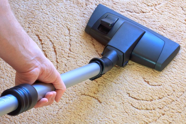 If you want to know further detail please visit at http://www.fairdinkumcarpetandpest.com.au