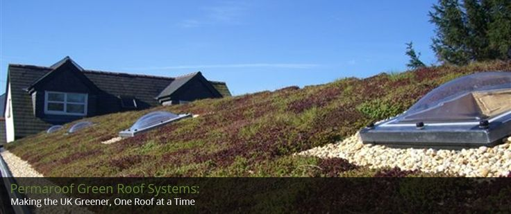 Green Roofs, Living or Sedum Roofs   EPDM Rubber Roofing Quote