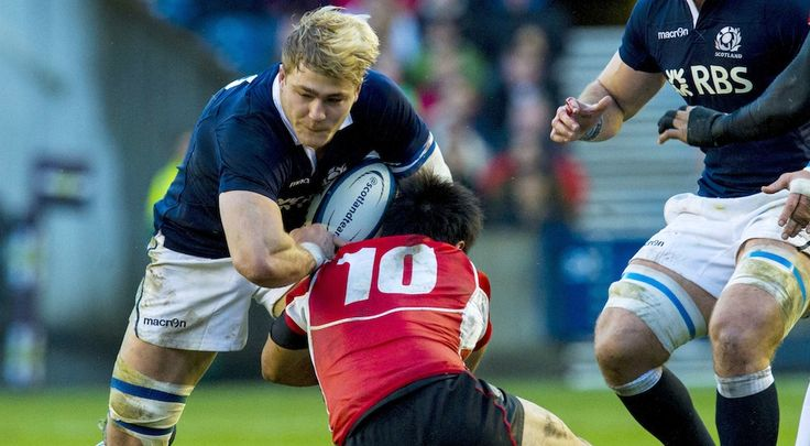 Scotland (David Denton)   Scottish Rugby Union