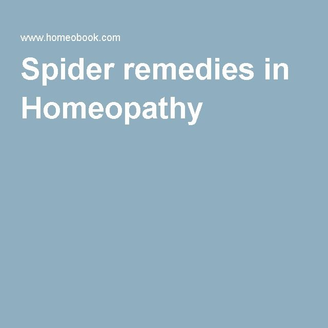 Spider remedies in Homeopathy |