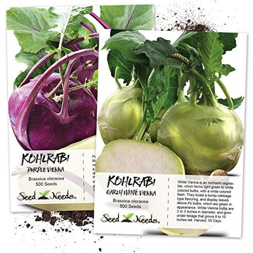 Kohlrabi - How to grow & care | Edible Parts (Edible plants