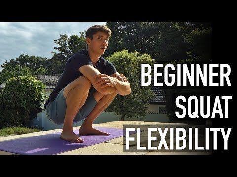 15 minute beginner squat flexibility routine follow along