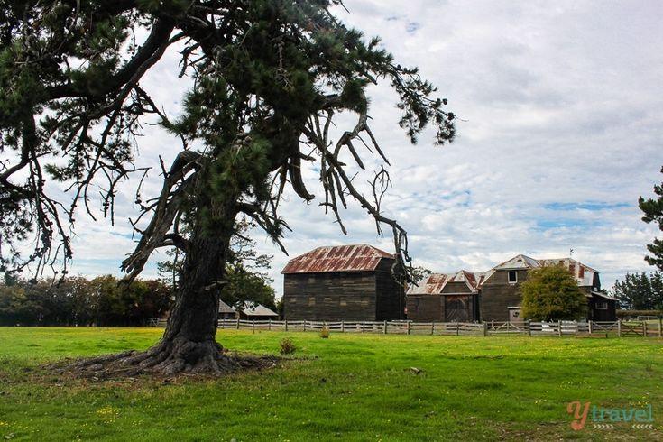 Brickendon farm, Longford Tasmania