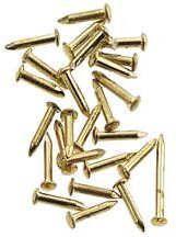 "(100 Pieces) Flat Headed Brass Brad Nail - 1/2"" Long"