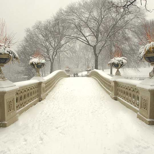 The Conservatory Garden is Central Park's six-acre formal garden. It is divided into three smaller gardens, each with a distinct style: Italian, French, and English.