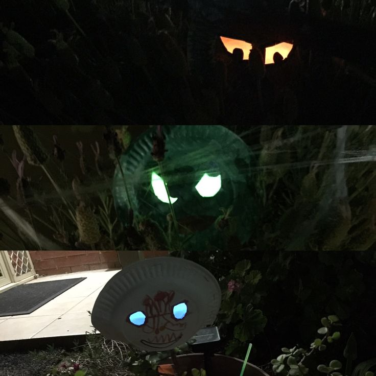 Glowsticks paper plates and cut out eyes for a scary monster in a garden.