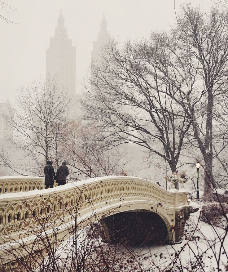 Central Park in winter / Click through to find out where to find the best photo spots in NYC! / A Globe Well Travelled