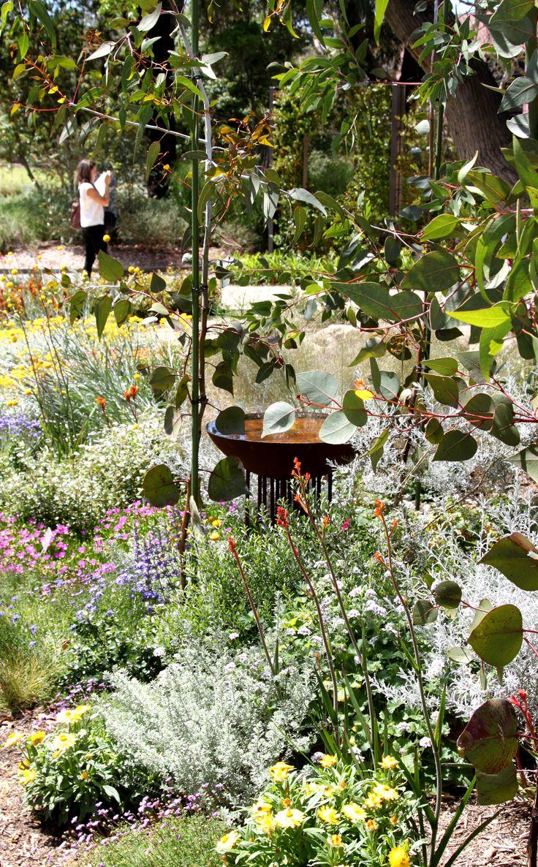 316 best native bush garden images on pinterest