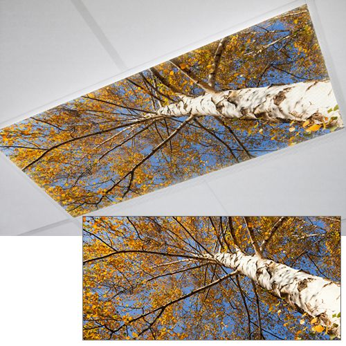 TREE WOODS FLUORESCENT OFFICE LIGHT COVER, This Looks Pretty Awesome. I  Think We Need